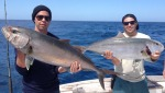 Catch the Big Fish in Sarasota by Starting at All About Fishing for Fishing Tips and Fresh Bait in FL