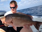 Best Fishing in Sarasota starts at All About Fishing, the Fishing Shop with Tackle and Bait in Florida